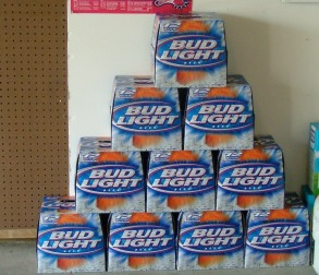 Project Beeramid